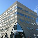 Not Bending, Waving: Menzies Research Institute, Hobart, Tasmania, Australia by linfranca