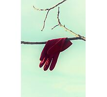 red glove Photographic Print
