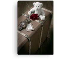 teddy bear Canvas Print