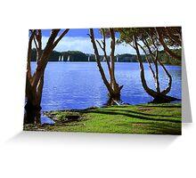 Lake Ainsworth - Lennox Head NSW Greeting Card
