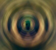 Radial Blur Trial #1 by Frederick James Norman