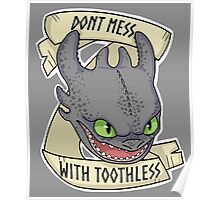 Toothless - Don't Mess With Toothless Poster