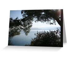 Pine Trees Overhanging The Aegean Sea, Gokova Greeting Card