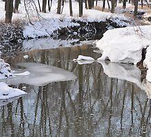 Snowy River scene by mltrue