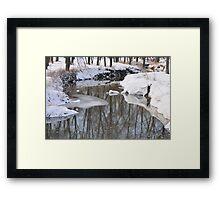Snowy River scene Framed Print