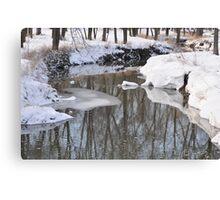 Snowy River scene Canvas Print