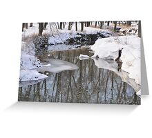 Snowy River scene Greeting Card