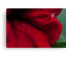 Abstract flower Case Canvas Print