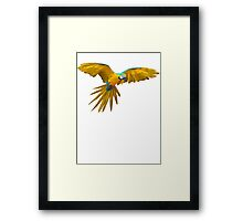 Low Polly Framed Print