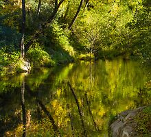 Secluded Reflections by BGSPhoto