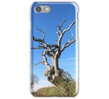 Old Tree iPad/iPhone Case iPhone Case/Skin