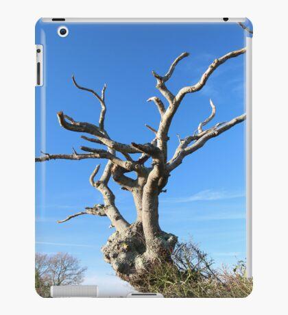 Old Tree iPad/iPhone Case iPad Case/Skin