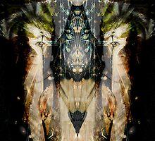 Spirit by Travis Duda