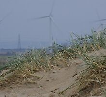 Camber Sands to Romney Marsh Power Fields by seymourpics