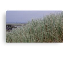 Camber Sands to Romney Marsh Canvas Print
