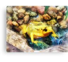 Panamanian Golden Frog Canvas Print