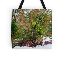 A Cacophony of Color Tote Bag