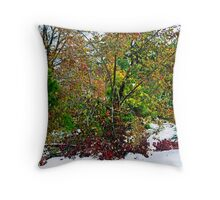 A Cacophony of Color Throw Pillow