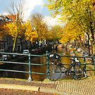 Amsterdam bicycle by Fyrion
