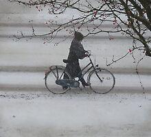 On a cold snowy day ....  by Johanna26