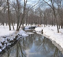 Another Snowy River Scene by mltrue