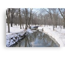 Another Snowy River Scene Metal Print