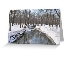 Another Snowy River Scene Greeting Card
