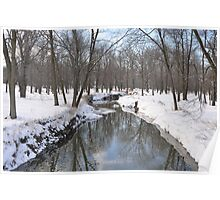 Another Snowy River Scene Poster