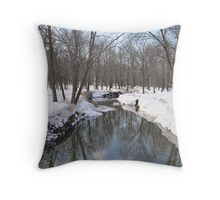 Another Snowy River Scene Throw Pillow