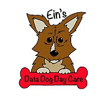 Data Dog Day Care Photographic Print