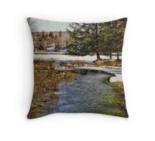 Streaming and Dreaming Throw Pillow