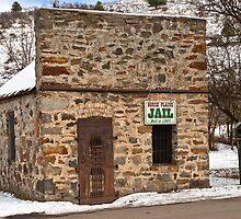 Wild Horse Plains (Montana) Jail by Bryan D. Spellman