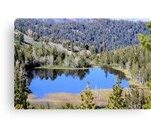 Pond on Mt Rose,Reno,Nevada USA Canvas Print