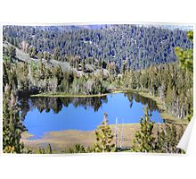 Pond on Mt Rose,Reno,Nevada USA Poster