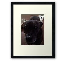 Hey, You there! Framed Print