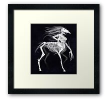 Monster Girls - Centaur Framed Print