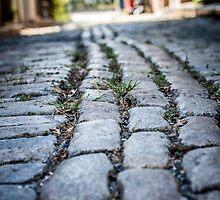 Rocky Road by EdwardKay