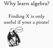 Why learn algebra? by bigredbubbles6
