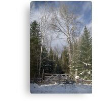A Winter Scene........... Metal Print