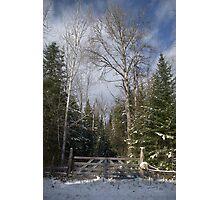 A Winter Scene........... Photographic Print