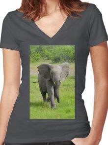 Young elephant charges at viewer  Women's Fitted V-Neck T-Shirt