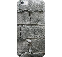 Hollow blocks wall iPhone Case/Skin