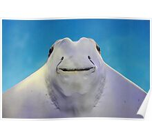 cownose ray Poster
