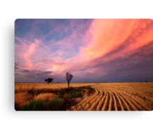 After the Harvest and Storm has gone Canvas Print