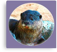 Cute Little Otter Face Canvas Print