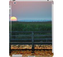 The Atlantic Swollows  iPad Case/Skin