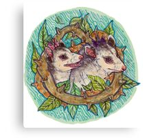 Pair of opossum Canvas Print