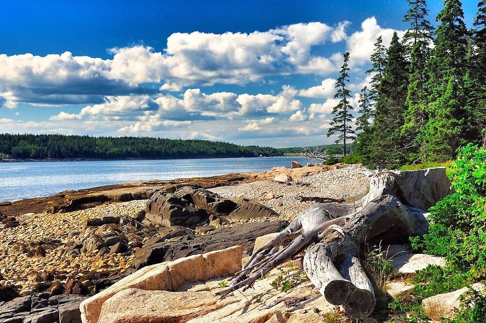 Acadia National Park, Schoodic Penninsula, Maine, USA by fauselr