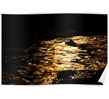 Golden Reflections 2 Poster