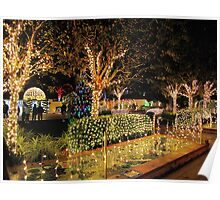 Holiday Lights in the Garden at Florida Botanical Gardens Poster